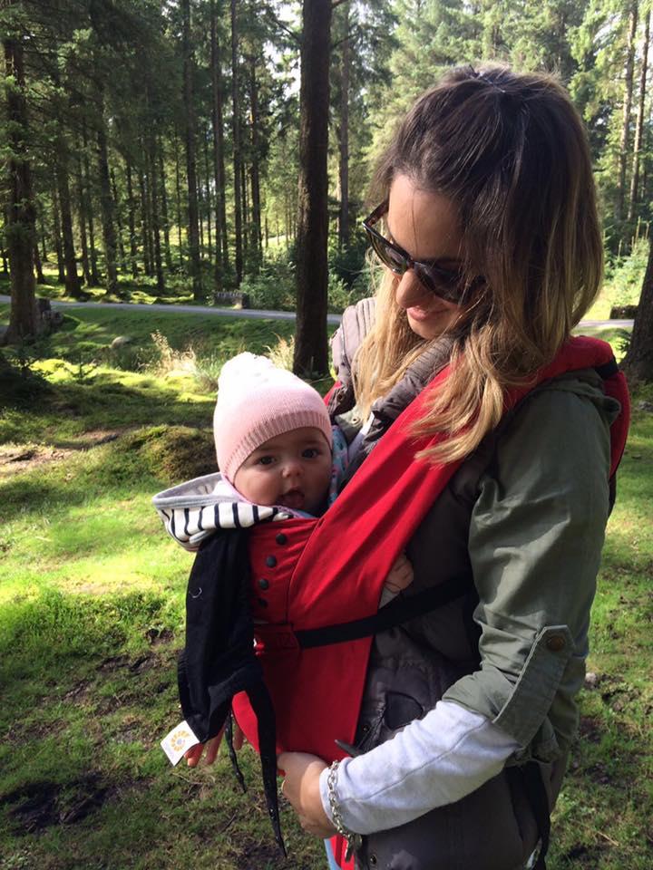 Dartmoor hikes